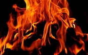 Coal-_-fire_2404398b