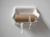 Empty_Toilet_Paper_Roll